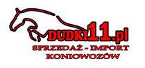 Firma Handlowo Usługowa Łukasz Piotrowicz
