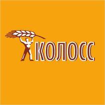 ТОО Торговый дом «КОЛОСС»