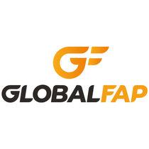 GLOBAL FAP